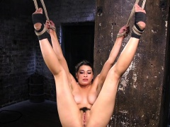 Hairy and busty brunette gets tormented